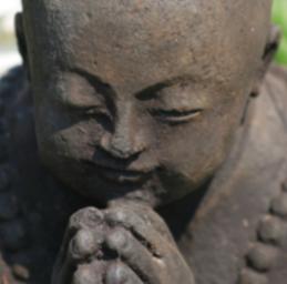 Feeling Gratitude?