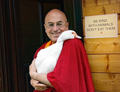 Monk with goose