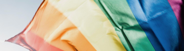Banner_LGBTIQ_flag_1440x400px.png