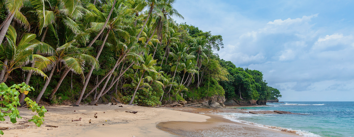 Sri-Lankan-Beach-rowan-heuvel-unsplash.png